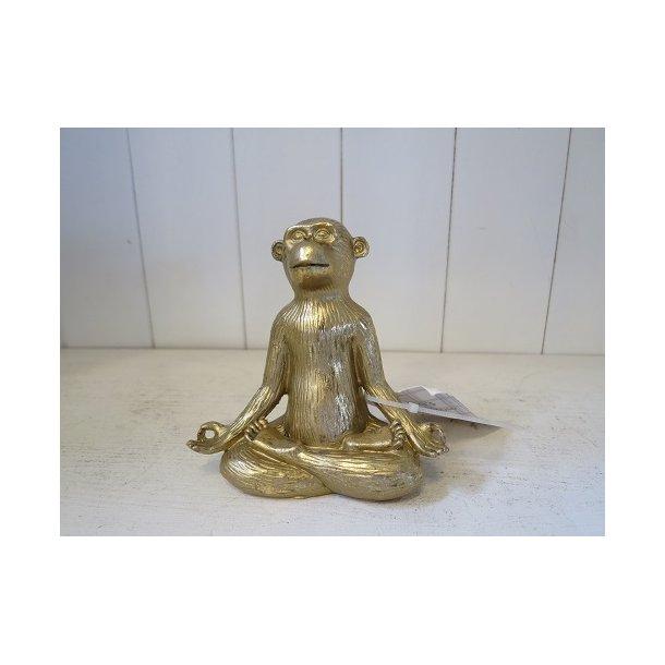 Sjov abe i  yogastilling